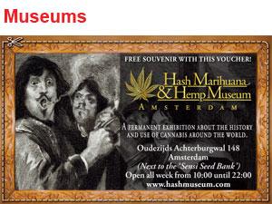 hash hamp museum