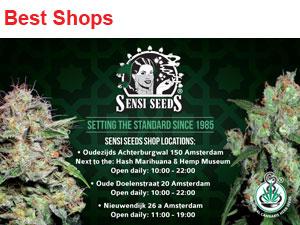 sensi seed shop